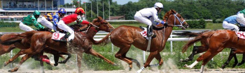 لعبة الخيول